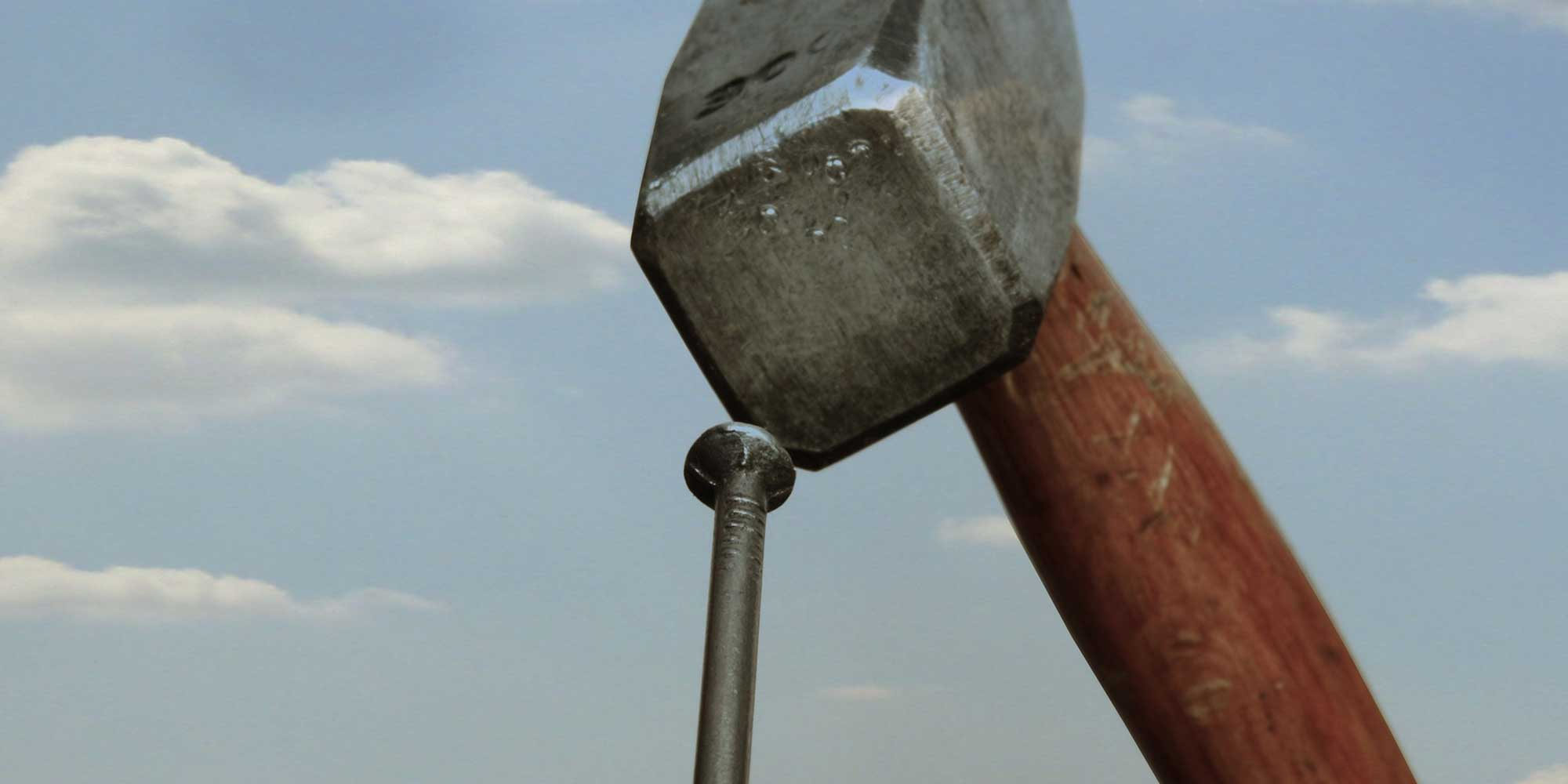 I have an executive coaching hammer, but not every problem is a nail!